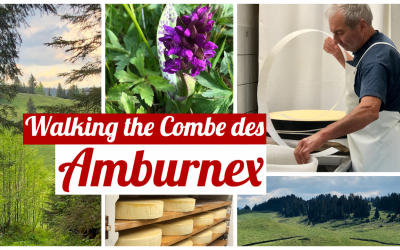 Walking the Combe des Amburnex