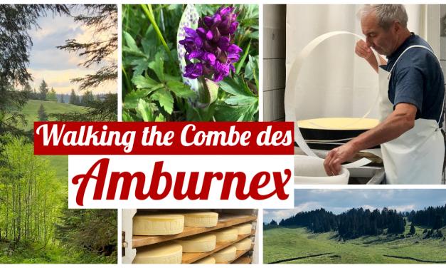 Walking the Combe des Amburnex